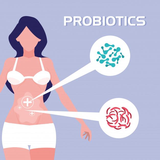在健康的陰道生態中,最常見的細菌為乳酸桿菌。乳酸桿菌可經由口服到達結腸,再移轉至陰道,並將陰道的環境維持在pH 4.5以下,製造過氧化氫以抑止細菌及黴菌的滋生。