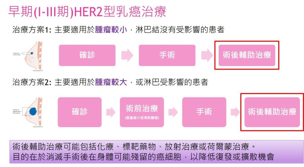 早期(I-III期)HER2型乳癌治療流程。