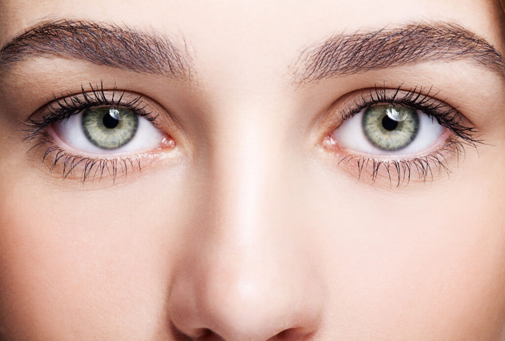淺色眼珠人士也能調節瞳孔來避免過多光線進入眼內,因此他們不會更易畏光。